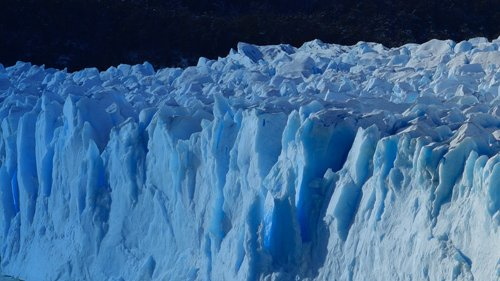 2020_08-Taranaki-Climate-Change_Wagtail.jpg