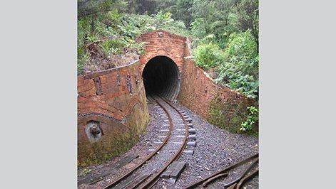 Driving Creek Railway 1