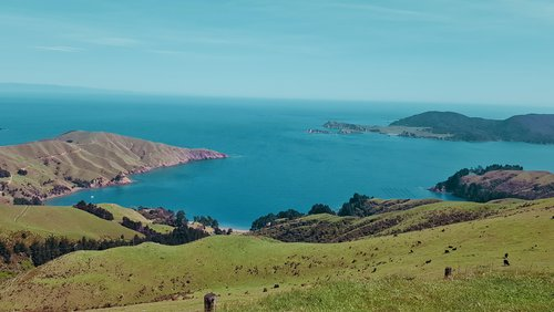 Coast NZ